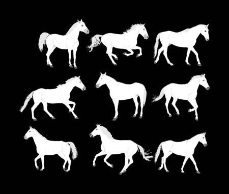 Collection of Elegant racing horse in gallop portrait vector silhouette isolated on black background. Hippodrome sport event. Entertainment and gambling. Equestrian riding horse for jumping over barrier show. Noble animal.