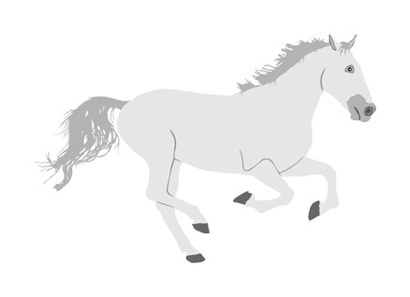 Elegant racing white horse in gallop vector illustration isolated on white background. Hippodrome sport event. Entertainment and gambling sport. Equestrian riding horse for jumping over barrier show