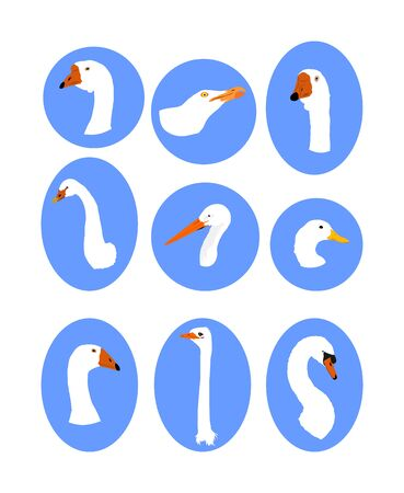 White feather bird collection vector isolated. Goose head, seagull symbol, swan portrait, stork, duck, ostrich sign, gull. Wildlife and domestic farm birds.