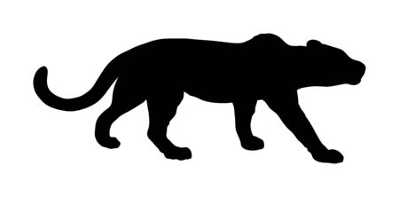 Leopard vector silhouette isolated on white background. Wild cat in hunt lurking pray. Cougar or puma symbol. Silent predator, attraction in zoo park. Illustration