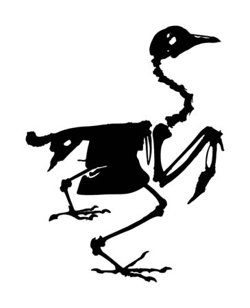 Bird skeleton vector silhouette isolated on white background. Animal anatomy. Fossil for since. Fauna biology. Bones structure system. Education archaeology. Chicken skeleton, body parts structure. Çizim