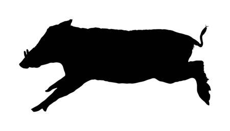 Warthog vector silhouette illustration isolated on white background. Bush Pig. Wild boar symbol. African boar isolated, desert warthog icon. Wild animals of Africa. Savannah nature wildlife. Pumba hog Çizim