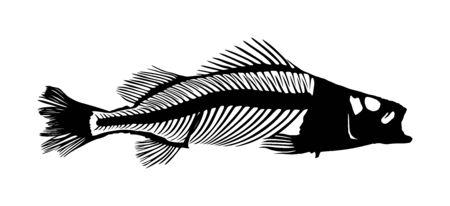 Fish skeleton vector silhouette  isolated on white Illusztráció