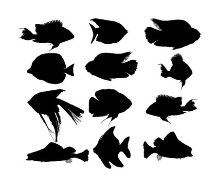 Aquarium exotic fish silhouette vector collection, under water world. Oscar fish isolated on white background. Coral reef Pisces. Colorful fish. Zebrasoma yellow tag, Angel fish, red parrot, clown.
