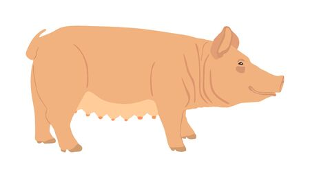 Pig vector silhouette isolated on white background. Pork meat. Butcher shop wallpaper or poster. Farm animal symbol pig. Domestic animal. Swine portrait. Sow symbol. Vectores