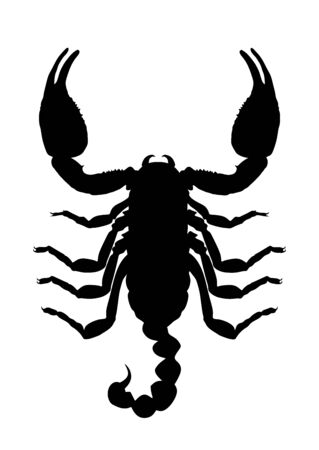 Scorpion vector silhouette illustration isolated on white background. Deadly venom animal symbol. Poison animal.