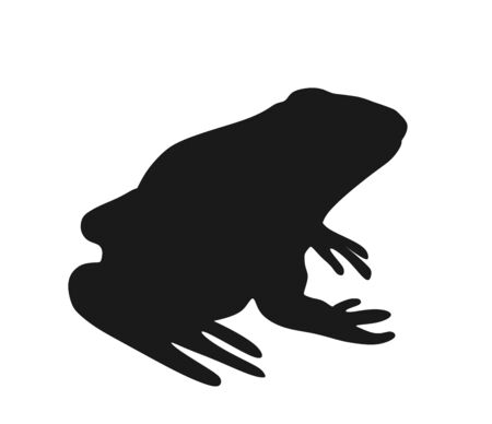 Frog vector silhouette illustration isolated on white background. Animal symbol, zoology of amphibian. Иллюстрация
