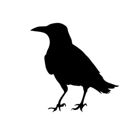 Crow vector silhouette isolated on white background. Black bird raven symbol. Иллюстрация