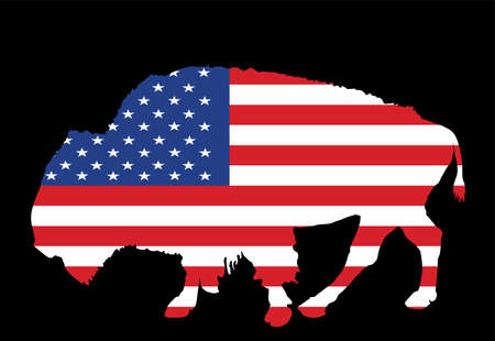United States of America flag over bison vector isolated. USA flag over buffalo, national symbol, pride and power animal. Illusztráció