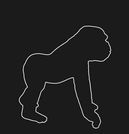 Gorilla vector line contour silhouette isolated on black background. Big monkey symbol. Wild life from Africa. Family of primates. Male Gorilla, King Kong sign.
