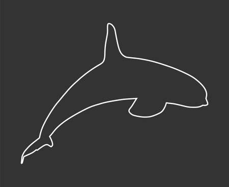 Killer Whale line contour, jumping out of water vector silhouette illustration isolated on black background. (Orcinus Orca). Underwater life. Orca in swimming pool. Иллюстрация