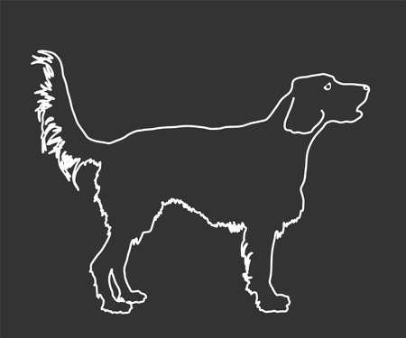 Portrait of Golden Retriever vector line contour illustration isolated on black. Beware of dog. Friendly family dog. Labrador retriever graphic.