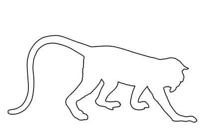 Langur Monkey line contour vector isolated on white background. Red-shanked Douc (Pygathrix nemaeus). Yellow face Shin shin Named lemur. 向量圖像