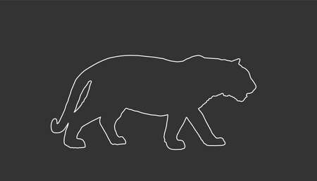 Tiger vector line contour illustration isolated on black background. Big wild cat. Siberian tiger or Bengal tiger. Фото со стока - 153019364