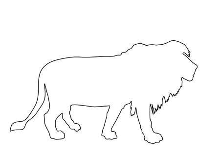 Lion vector line contour silhouette illustration isolated on white background. Animals king. Big cat. Pride of Africa. Lion zodiac symbol. Wildlife predator. Фото со стока - 153019368