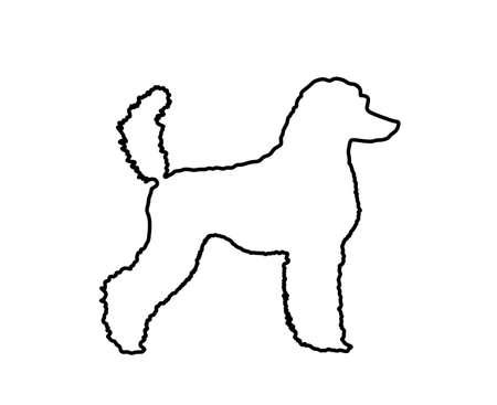 Portrait of Royal Poodle vector line contour silhouette illustration isolated. French black poodle walking. Beware of dog sign. Dog show exhibition. Ilustração