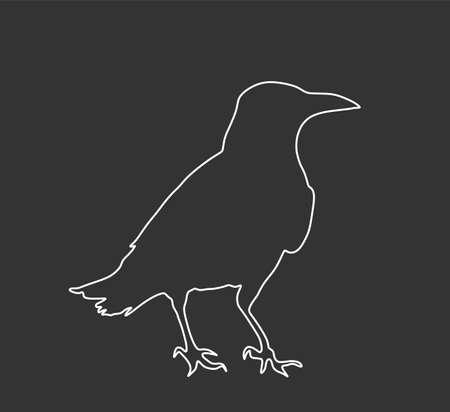 Crow vector line contour silhouette isolated on black background. Black bird raven symbol.