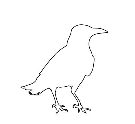 Crow vector line contour silhouette isolated on white background. Black bird raven symbol.