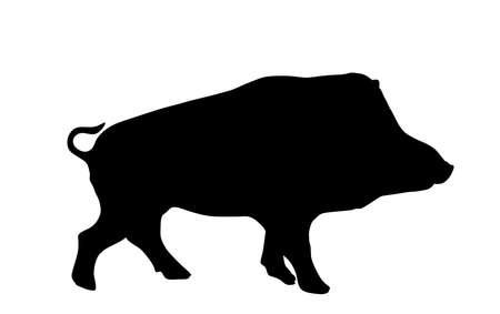 Warthog vector silhouette illustration isolated on white background. Bush Pig. Wild boar symbol. Boar isolated, warthog icon. Wild animals nature wildlife. Pumba hog. 向量圖像