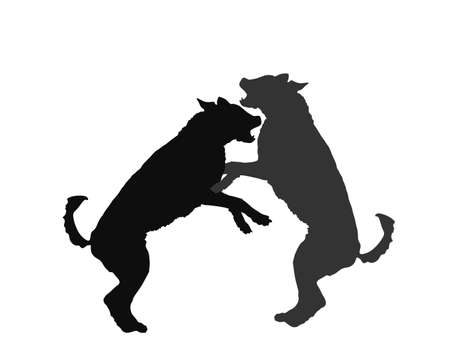 Aggressive dogs fighting vector silhouette isolated on white background. Rabies dog battle. Фото со стока - 153641169