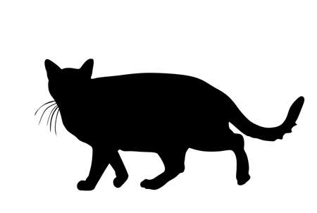 Domestic cat walking vector silhouette illustration isolated on white background. Lovely kitty pet symbol.