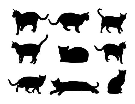 Group of many black cats vector silhouette illustration isolated on white background. Cat family. Lovely friendly pets. 矢量图片