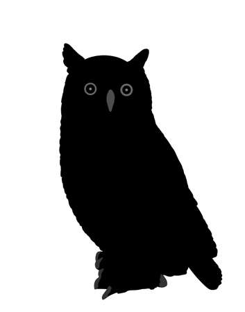 Owl vector silhouette illustration isolated on white background. Night bird hunter.