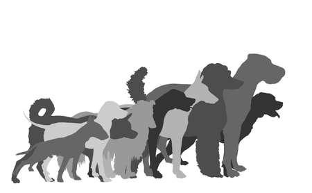Many dogs in line waiting for veterinary clinic vector silhouette. Pack/array of dog illustration isolated on white. Dalmatian, Poodle, Rottweiler, Great Dane, Doberman, Rough Collie Scottish Shepherd Иллюстрация