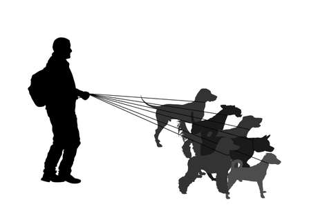 Professional dog walker man on street with many dogs on leash vector silhouette. Walking the pack/array of dogs illustration isolated on white. Dalmatian, Fox terrier, Russel jack, Labrador, Poodle...