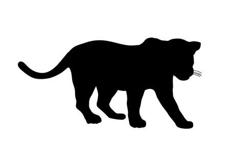 Jaguar vector silhouette illustration isolated on white background. Big cat, silent predator from America. Beautiful animal. Black panther.