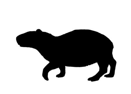 Capybara vector silhouette illustration isolated on white background. The bigest rodent animal symbol. Hydrochaeris hydrochaeris.