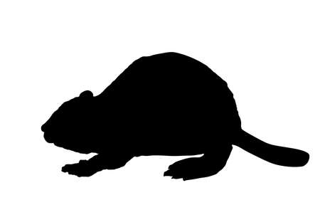 Beaver vector silhouette illustration isolated on white background.