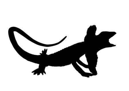 Frilled lizard vector silhouette illustration isolated on white background. Chlamydosaurus kingii symbol. Frill Dragon Neck. Stock Illustratie