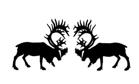 Deer battle vector silhouette illustration isolated on white. Reindeer powerful buck with huge antlers. Rein deer fighting for female. Struggle in forest. Zoo animal nature. Christmas holiday symbol.