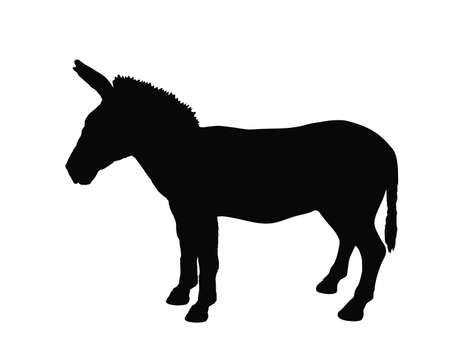 Zonkey vector silhouette illustration isolated on white background. Zebra silhouette. Donkey silhouette symbol. Zorse or zebrula or zonkie.