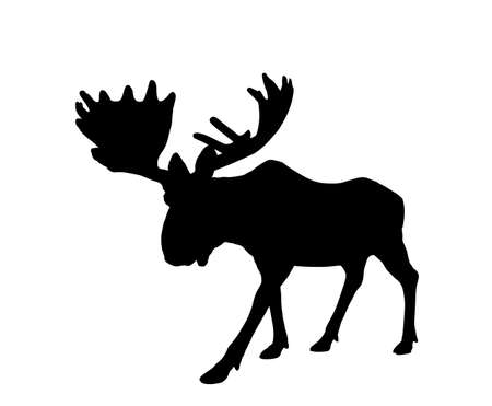 Moose vector silhouette illustration isolated on white background. Elk buck. Powerful deer with huge antlers symbol.