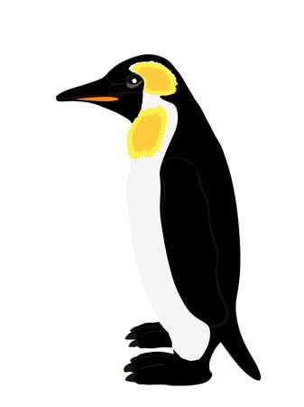 Penguin vector illustration isolated on white background. Big polar bird symbol. Stock Illustratie