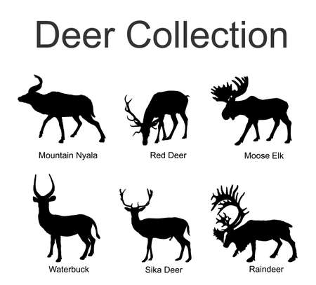 Deer collection vector silhouette illustration isolated on white background. Mountain nyala antelope. Moose elk. Reindeer buck. Red deer grassing. Waterbuck african deer. Sika symbol. Stock Illustratie