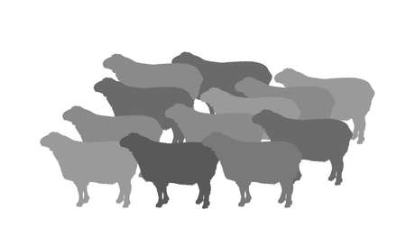 Flock of sheep vector silhouette illustration. Lamb meat. Butcher shop template for craft food packaging or restaurant design. Domestic animal symbol.
