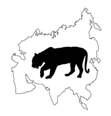 Tiger vector silhouette illustration isolated on Asia map continent contour on white background. Big wild cat. Siberian tiger (Amur tiger - Panthera tigris altaica) or Bengal tiger.