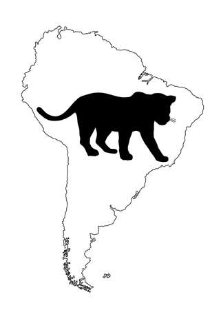 Wild cat jaguar vector silhouette illustration on Southern America map vector silhouette contour isolated on white background.