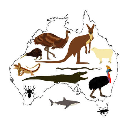 Animals from Australia vector illustration collection. Australian map vector silhouette contour illustration isolated on white background. Continent symbol. Иллюстрация