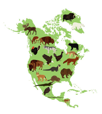Continent Northern America vector map silhouette illustration with wild animals, isolated on white background. United states of America, Canada, Mexico, Cuba,  Bahamas, Caribbean sea territory.