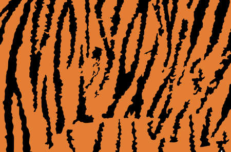 Tiger skin pattern vector illustration. Fashion animal print. Asian animal texture. Tiger fur background flag.