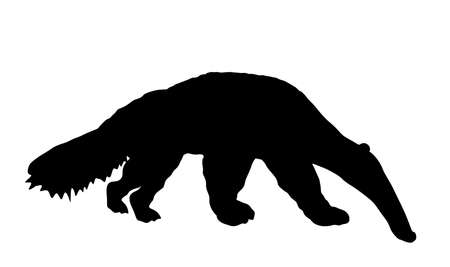 Giant anteater vector silhouette illustration isolated on white background. Ant eater animal symbol, from South America.
