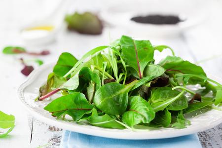 素朴な白の背景、選択と集中にほうれん草、ルッコラ、ロメイン レタス、レタス、ゴマ種子の新鮮なグリーン サラダ