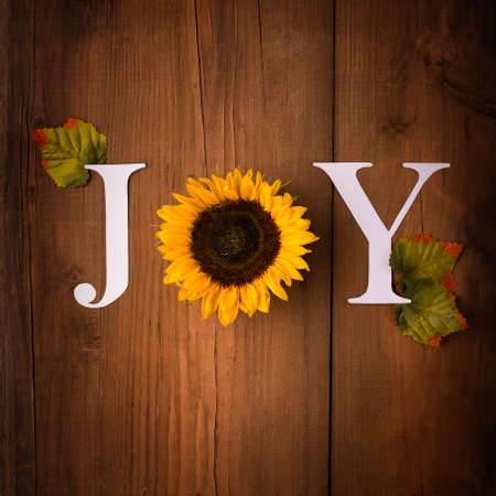 Word Joy. Autumn greeting card invitation. Beautiful fresh sunflowers with leaves on rustic wooden background. Letter for posters, web banners. Fall, thanksgiving day concept. Flat lay, top view.