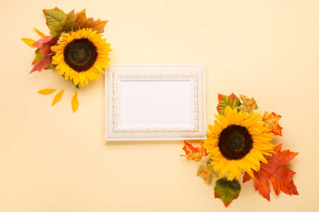 Autumn floral frame, web banner. Sunflowers, dried leaves, pumpkins, apples and rowan berries on yellow background. White wooden empty frame. Fall, Thanksgiving design. Flat lay, top view. Stockfoto