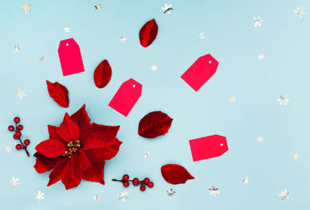 12.12 Super Sale concept - Christmas flower poinsettia, red paper tags and snowflakes on blue background. Design for promotion of winter end of year discount. Top view, copy space.