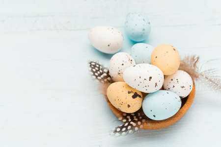 Easter craft eggs and branches on blue pastel background with space for text, selective focus. Easter decoration, craft quail minimalist egg design. Spring holiday festive card.